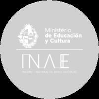 11 _INAE